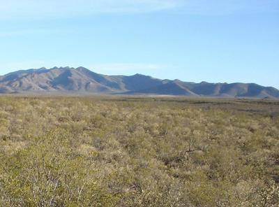 NO ADDRESS, Tombstone, AZ 85638 - Photo 1