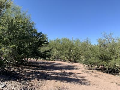 .54 ACRES OFF HWY 77, Mammoth, AZ 85618 - Photo 2