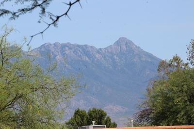 384 W CAMINO PENASCO APT B, Green Valley, AZ 85614 - Photo 2