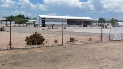 11726 N PASEO ANASTASIA, Marana, AZ 85653 - Photo 1