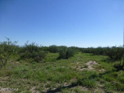 5 ACRES N COTTONTAIL (WEST 5 ACRES) LANE #0, Cochise, AZ 85606 - Photo 1