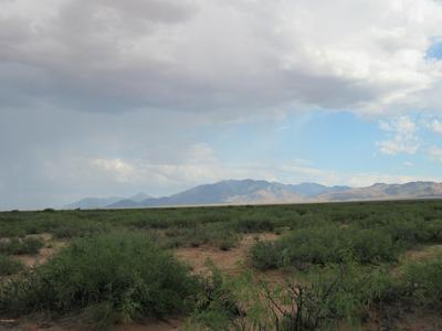 50 ACRES E SOAPTREE EAST ROAD, Bowie, AZ 85605 - Photo 2