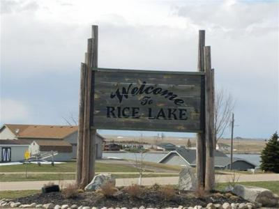 461 N RICE LAKE RD, Douglas, ND 58735 - Photo 1