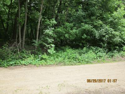 * SUNSETRIDGE ROAD S, Ashby, MN 56309 - Photo 1