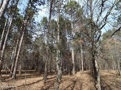 LOT 9 EXPLORER CIRCLE, Park Rapids, MN 56470 - Photo 2