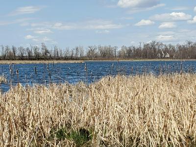 TBD E ARROW LAKE ROAD, Audubon, MN 56511 - Photo 2