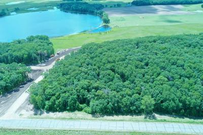 PARCEL D STONY HILLS LANE, Perham, MN 56573 - Photo 2