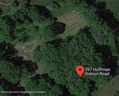 397 HOFFMAN STATION RD, Monroe, NJ 08831 - Photo 1