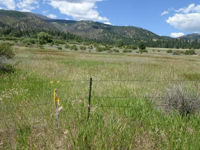 NHN KING ROAD, Florence, MT 59833 - Photo 1
