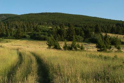 TBD WINEGLASS GRAZING RANCH, Helmville, MT 59843 - Photo 1