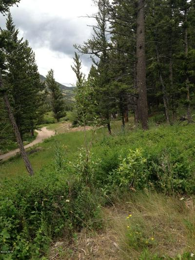 LOT 16&17 GIBSON LAKE HOMESITES, Augusta, MT 59410 - Photo 2