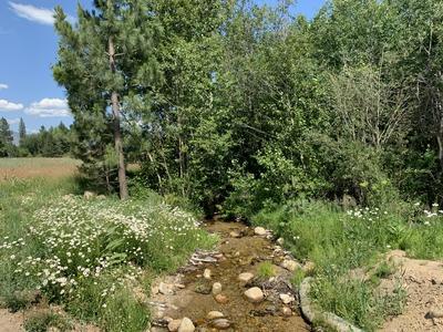 117 MOUNTAIN PARK ROAD, Florence, MT 59833 - Photo 1