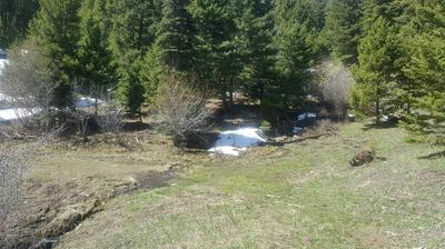 123 HIDDEN CANYON RD, Helmville, MT 59843 - Photo 1