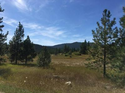 NHN LOT 35 MEADOW ROAD, POLSON, MT 59860 - Photo 2