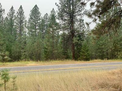 LOT 2 CASTLE'S RIVERSIDE TRACTS, Superior, MT 59872 - Photo 2