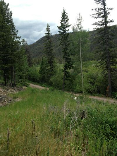 LOT 16&17 GIBSON LAKE HOMESITES, Augusta, MT 59410 - Photo 1