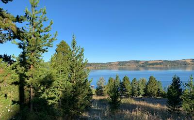 TBD SCENIC DRIVE, Philipsburg, MT 59858 - Photo 1