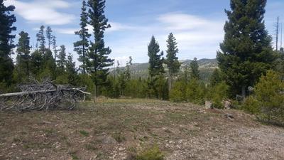 58 CAT TRACK RD, HELMVILLE, MT 59843 - Photo 1