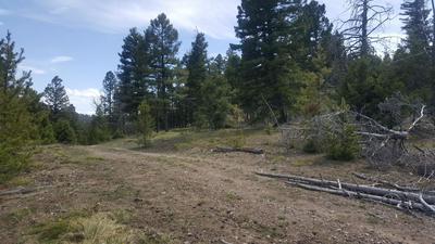 58 CAT TRACK RD, HELMVILLE, MT 59843 - Photo 2