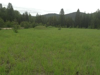 MOUNTAIN HOME LANE, DE BORGIA, MT 59830 - Photo 1