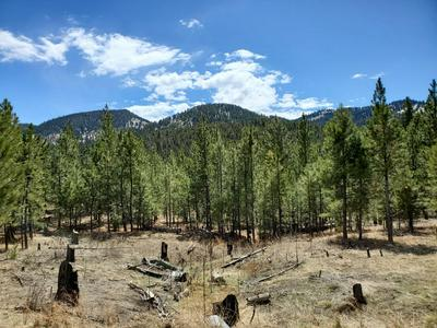 TBD SHEEP MOUNTAIN ROAD, Clancy, MT 59634 - Photo 2