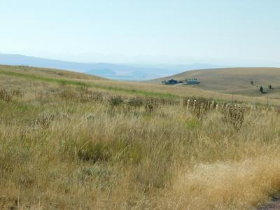 5 HOMESTEAD LN LOT 4, Philipsburg, MT 59858 - Photo 2