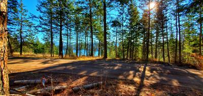 NHN WHITE SWAN ROAD, Polson, MT 59860 - Photo 2