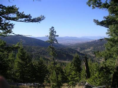 300 FOXTROT LN, HELMVILLE, MT 59843 - Photo 2