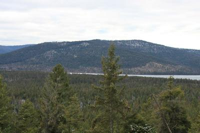 NHN BACKWOODS WAY, PROCTOR, MT 59929 - Photo 1