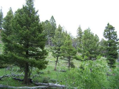 TBD HIGH ORE ROAD, Boulder, MT 59632 - Photo 2