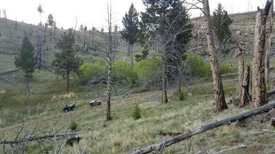 TBD NURSERY CREEK ROAD, Boulder, MT 59632 - Photo 1