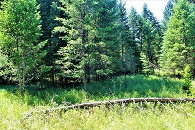 NHN POMEROY TRAIL, Eureka, MT 59917 - Photo 2