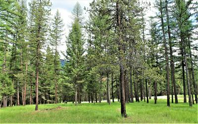 LOT 1 CRYSTAL LAKES DRIVE, Fortine, MT 59918 - Photo 2