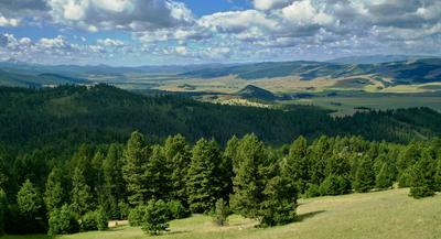 TBD GRANITE ROAD, Philipsburg, MT 59858 - Photo 1