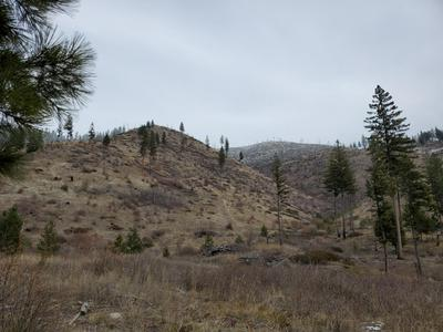 15 & 16 SOUTH NEMOTE CREEK, Alberton, MT 59820 - Photo 2