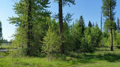 2316 DILLON RD, Columbia Falls, MT 59912 - Photo 2