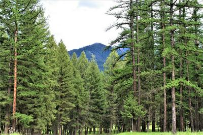 LOT 1 CRYSTAL LAKES DRIVE, Fortine, MT 59918 - Photo 1