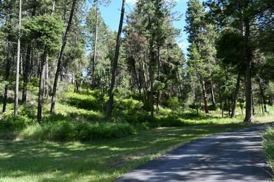 NHN BOON ROAD, Somers, MT 59932 - Photo 2