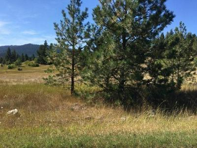 NHN LOT 35 MEADOW ROAD, POLSON, MT 59860 - Photo 1