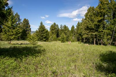 TRACT 2 SKYVIEW LANE, Philipsburg, MT 59858 - Photo 2