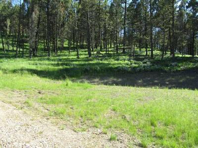 LOT 7 UPPER WHITETAIL DRIVE #TRACT 7, HELMVILLE, MT 59843 - Photo 1