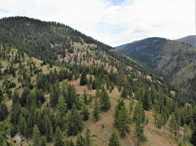 NHN SPRING HILL ROAD, FRENCHTOWN, MT 59834 - Photo 1