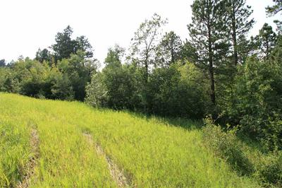 TRACT 30A PASQUE LOOP, Spearfish, SD 57783 - Photo 1