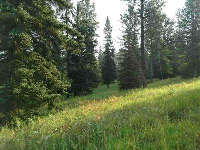 LOT 18A WOODLAND SPRINGS ROAD, Lead, SD 57754 - Photo 2