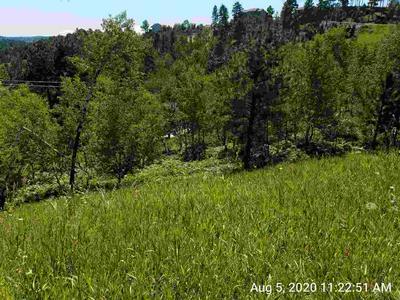 LOT 3 MOUNTAIN VIEW, Lead, SD 57754 - Photo 1