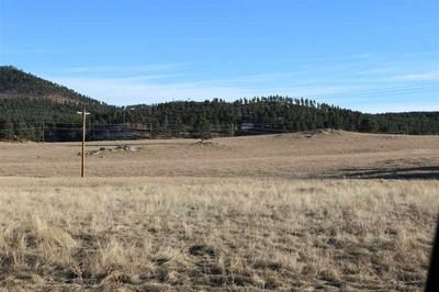 LOT 38 STONE HILL, Custer, SD 57730 - Photo 1