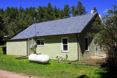 139 HARNEY ST, Custer, SD 57730 - Photo 2