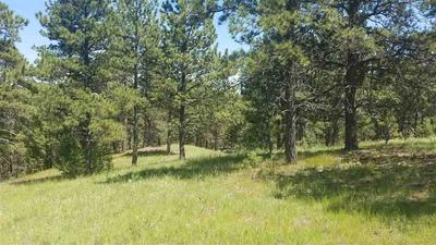 TBD HIGHWAY 89, Hot Springs, SD 57747 - Photo 2