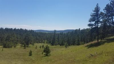 TBD HIGHWAY 89, Hot Springs, SD 57747 - Photo 1