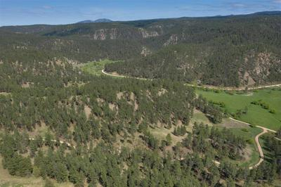 TBD RED CANYON ROAD, Beulah, WY 82712 - Photo 2